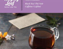 mighty-leaf-black-tea-orange-dulce-blossom
