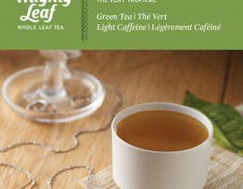 mighty-leaf-green-tea-green-tea-tropical