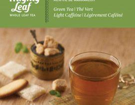 mighty-leaf-green-tea-marrakesh-mint-green-tea