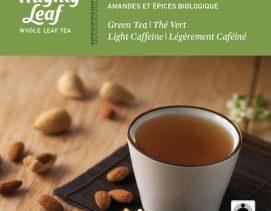 mighty-leaf-green-tea-organic-almond-spice