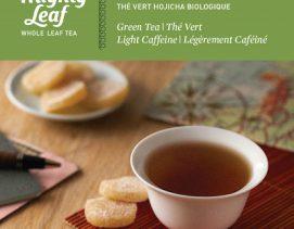 mighty-leaf-green-tea-organic-hojicha-green-tea