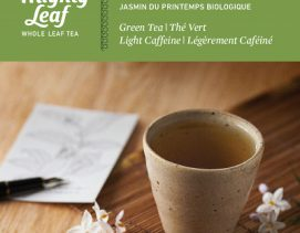 mighty-leaf-green-tea-organic-spring-jasmine