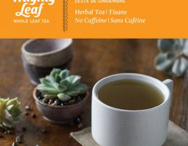 mighty-leaf-herbal-infusion-tea-ginger-twist
