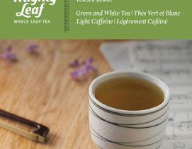 mighty-leaf-white-tea-white-orchard